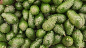 Avocado Fruit Vegetarian Avocado - iwaro / Pixabay